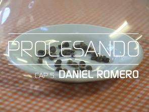 PROCESANDO / DANIEL ROMERO