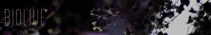Oscar Mulero & Fium presenta Biolive · Madrid · 4.03.2014 · Teatro Nuevo Apolo